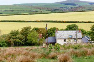 Bryn Mawr Farm